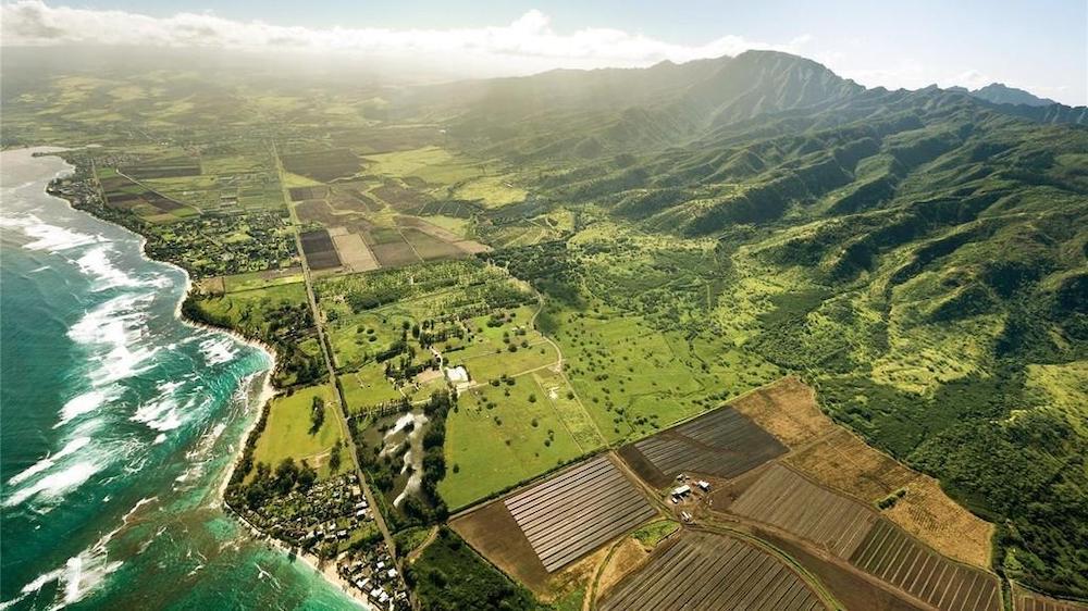 Oahu Dillingham Ranch